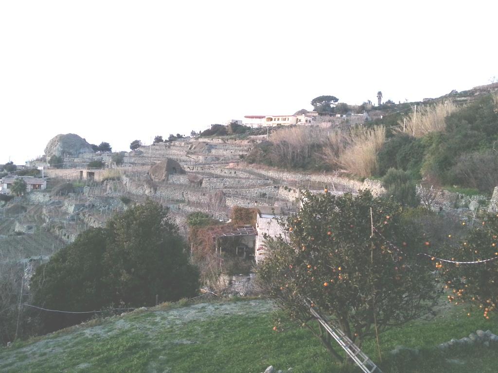 1 Paesaggio rurale