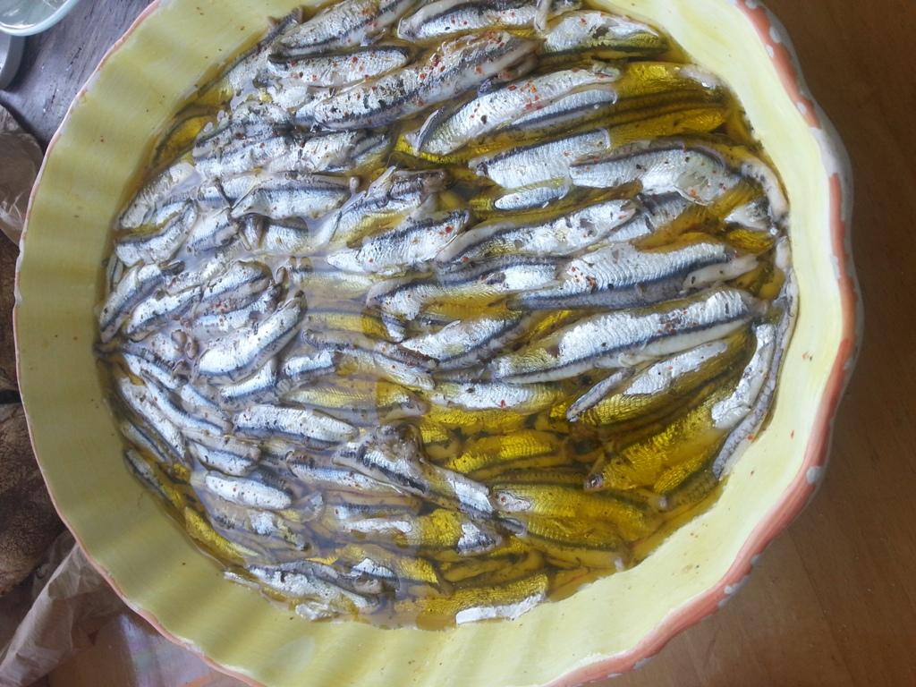 6/7 Ingredienti salutari: pomodorini e alici marinate del Tirreno