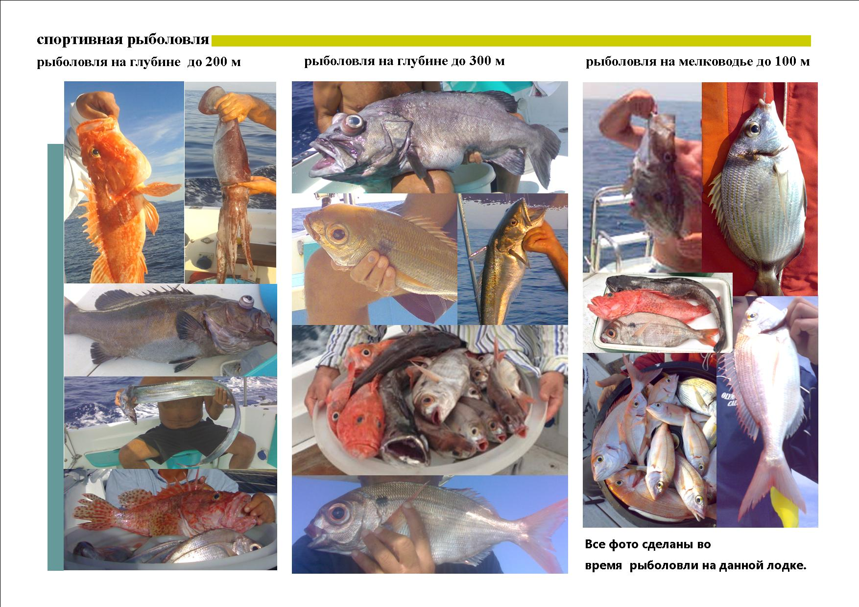 Deplian pesca sportiva russo 2