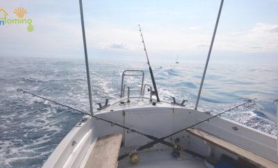 Inhoming – Pesca turismo: I piaceri della pesca