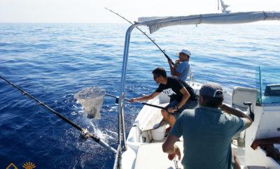 Pesca turismo Ischia: Superba giornata di pesca
