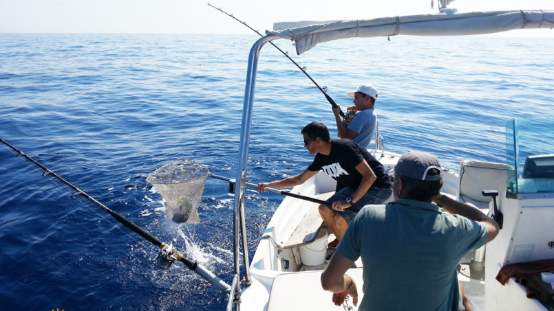 Fishing tourism Ischia: Superb fishing day