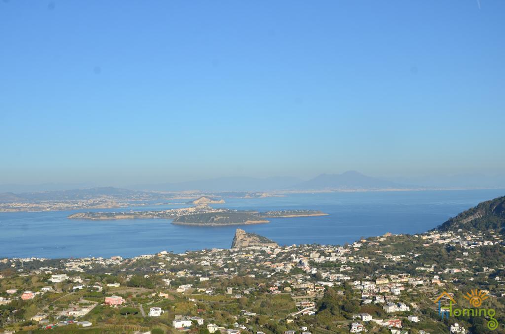 19 Panorama del golfo di Napoli