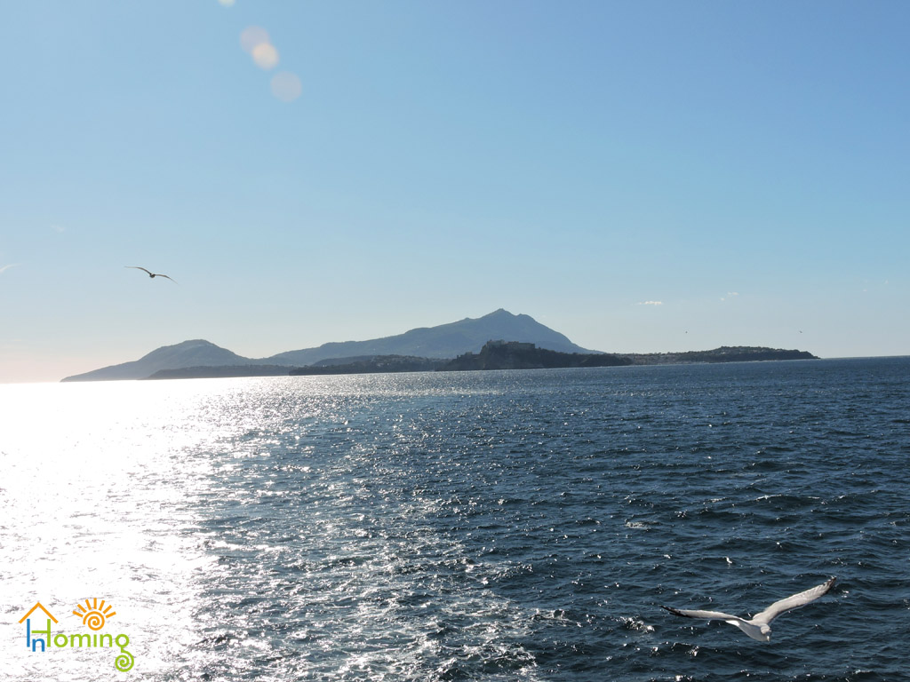 01 Ischia e Procida dal mare