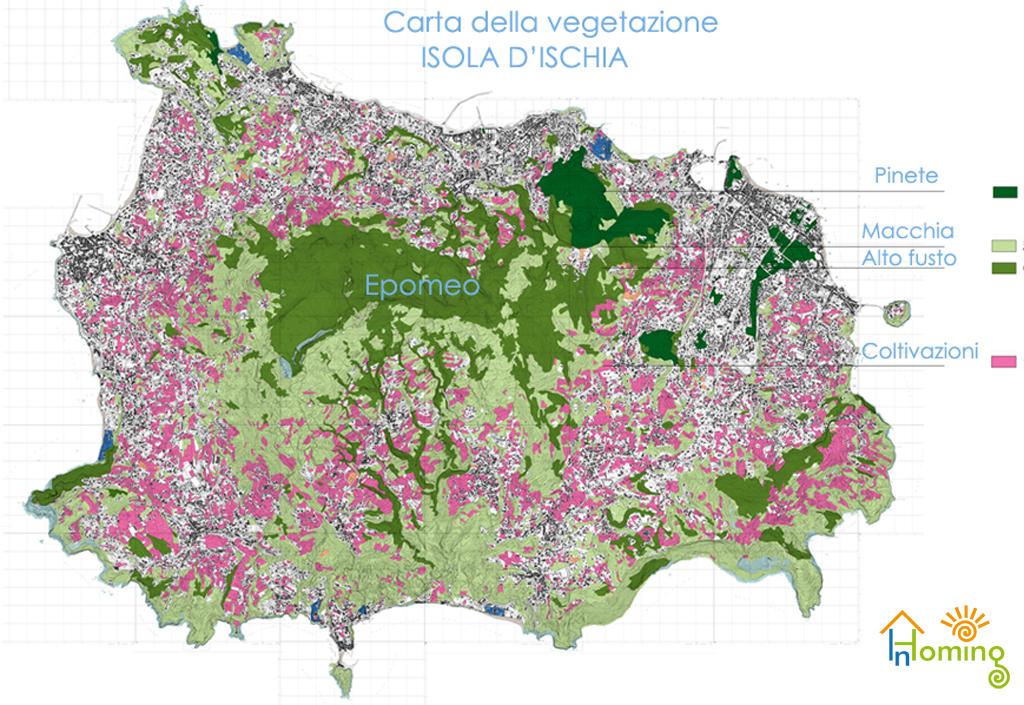 Monte Epomeo Ischia - Carta della vegetazione