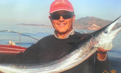 La pesca sportiva a Ischia nelle varie stagioni